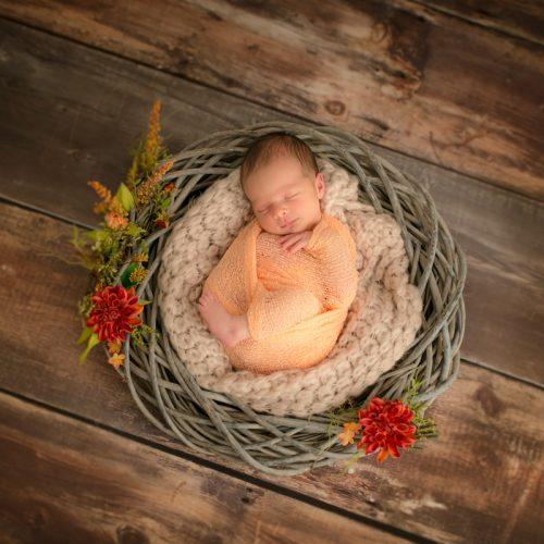 Neugeborenenfotografin - Birte Wührmann Forografie
