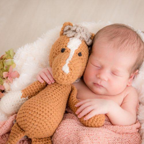 emotionale Newbornfotos und Babyfotos von professioneller Babyfotografin Birte Wührmann in Verden und Bremen mit Fotostudio in Achim